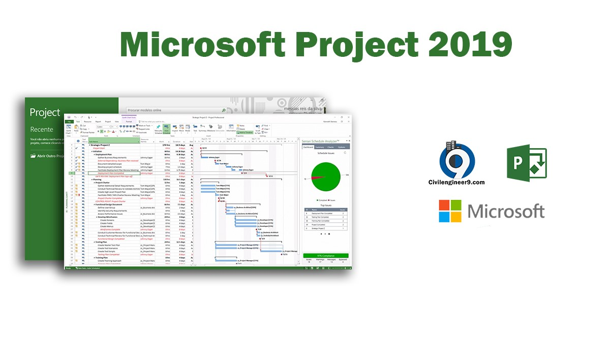 Microsoft Project Features